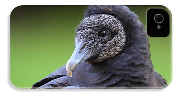 Black Vulture Portrait IPhone 4 / 4s Case by Bruce J Robinson