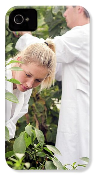 Scientists Examining Tomatoes IPhone 4 / 4s Case by Gombert, Sigrid