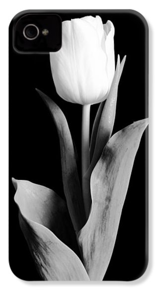 Tulip IPhone 4 / 4s Case by Sebastian Musial