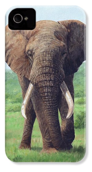 African Elephant IPhone 4 / 4s Case by David Stribbling