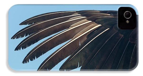 Usa, Florida, Everglades National Park IPhone 4 / 4s Case by Jaynes Gallery