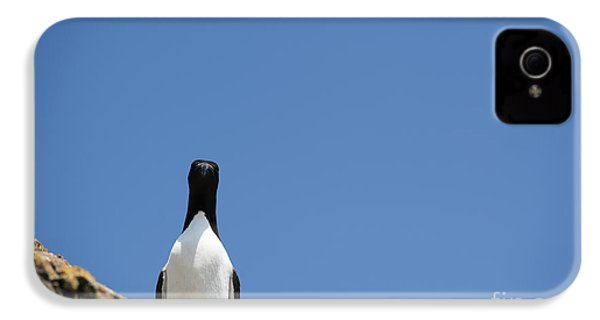 A Curious Bird IPhone 4 / 4s Case by Anne Gilbert