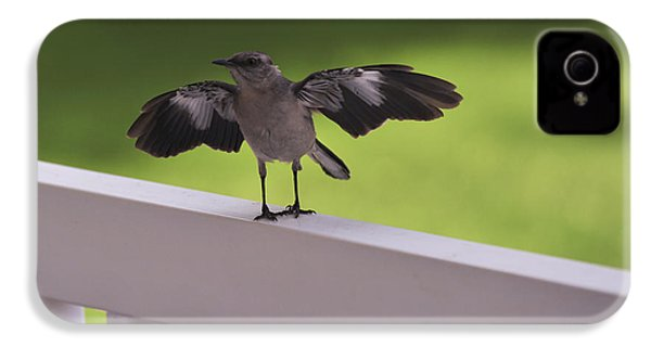A Little Visitor Northern Mockingbird IPhone 4 / 4s Case by Terry DeLuco