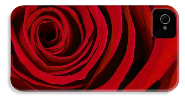 A Rose For Valentine's Day IPhone 4 / 4s Case by Adam Romanowicz
