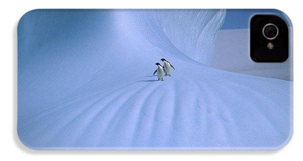 Adelie Penguins On Iceberg Antarctica IPhone 4 / 4s Case by Peter Sinden
