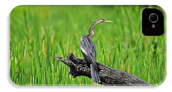 American Anhinga IPhone 4 / 4s Case by Al Powell Photography USA