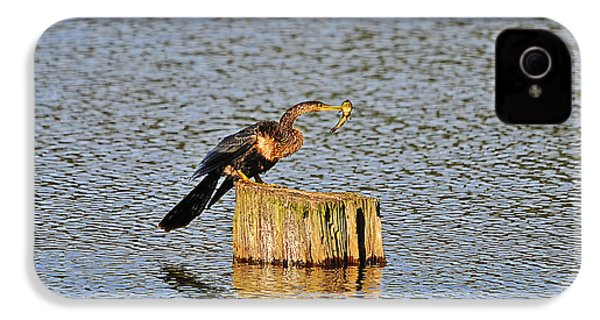 American Anhinga Angler IPhone 4 / 4s Case by Al Powell Photography USA
