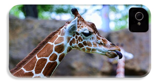 Animal - Giraffe - Sticking Out The Tounge IPhone 4 / 4s Case by Paul Ward