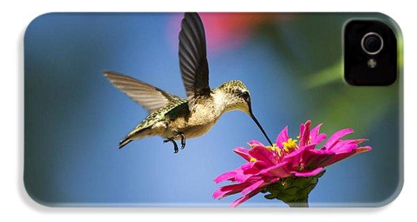 Art Of Hummingbird Flight IPhone 4 / 4s Case by Christina Rollo
