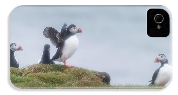 Atlantic Puffins Fratercula Arctica IPhone 4 / 4s Case by Panoramic Images