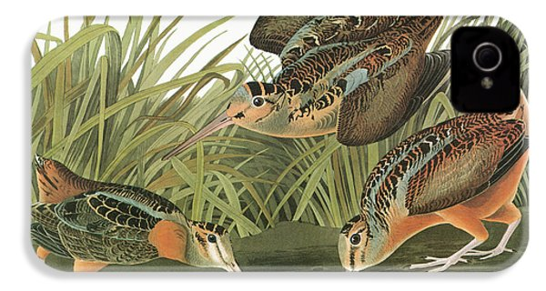 Audubon Woodcock IPhone 4 / 4s Case by Granger