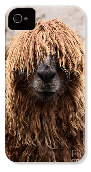 Bad Hair Day IPhone 4 / 4s Case by James Brunker