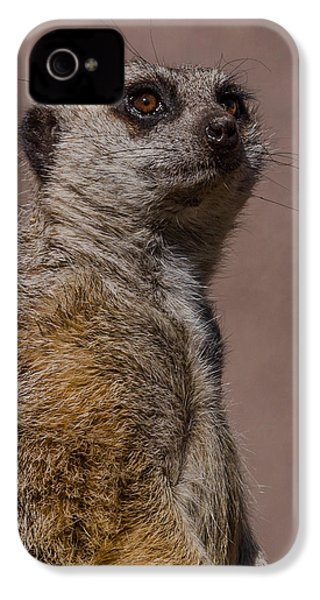 Bad Whisker Day IPhone 4 / 4s Case by Ernie Echols