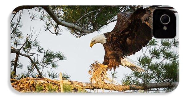 Bald Eagle Building Nest IPhone 4 / 4s Case by Everet Regal
