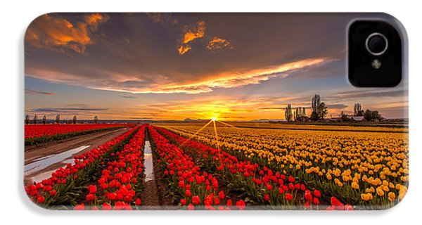 Beautiful Tulip Field Sunset IPhone 4 / 4s Case by Mike Reid