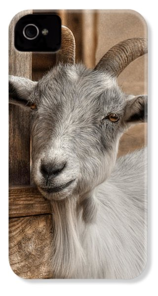 Billy Goat IPhone 4 / 4s Case by Lori Deiter