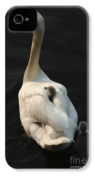 Birds Of A Feather Stick Together IPhone 4 / 4s Case by Bob Christopher