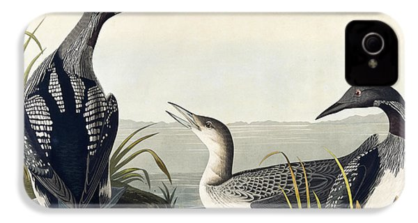 Black Throated Diver  IPhone 4 / 4s Case by John James Audubon