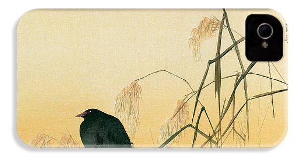 Blackbird IPhone 4 / 4s Case by Japanese School