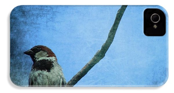 Sparrow On Blue IPhone 4 / 4s Case by Dan Sproul
