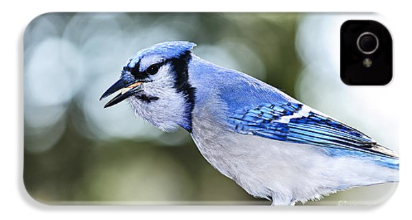 Blue Jay Bird IPhone 4 / 4s Case by Elena Elisseeva