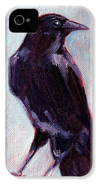 Blue Raven IPhone 4 / 4s Case by Nancy Merkle
