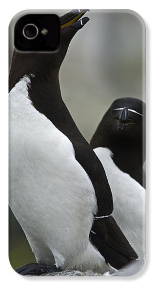 Bonded For Life... IPhone 4 / 4s Case by Nina Stavlund