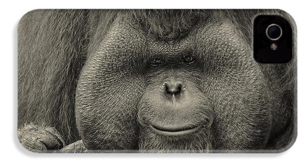 Bornean Orangutan II IPhone 4 / 4s Case by Lourry Legarde