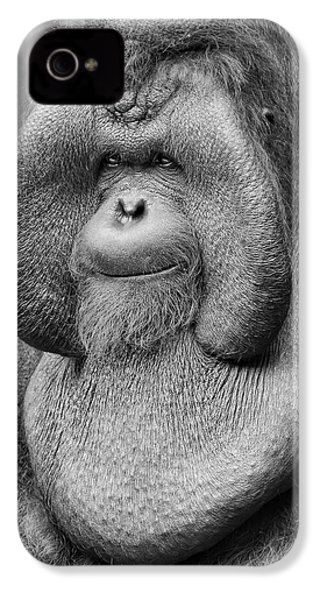 Bornean Orangutan IIi IPhone 4 / 4s Case by Lourry Legarde