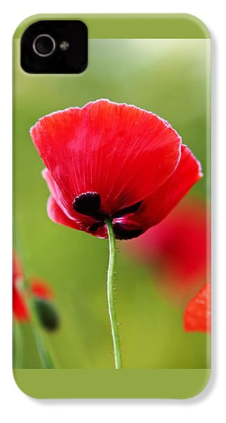 Brilliant Red Poppy Flower IPhone 4 / 4s Case by Rona Black