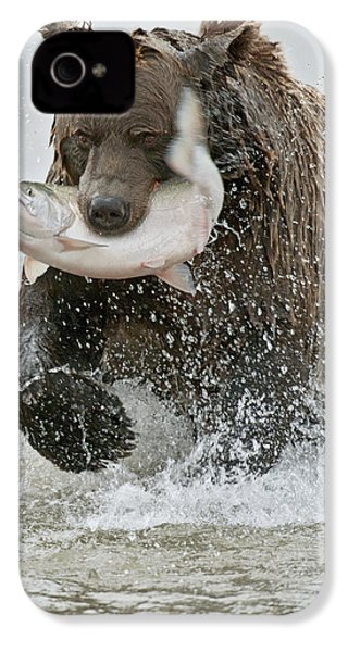 Brown Bear With Salmon Catch IPhone 4 / 4s Case by Gary Langley