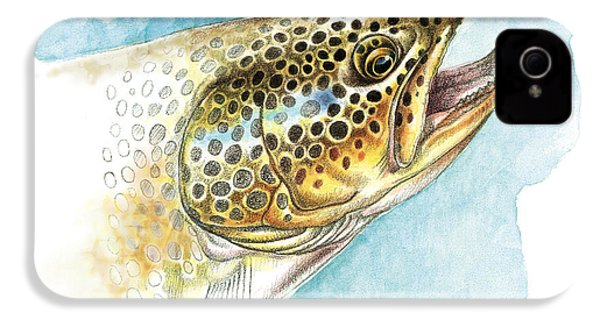 Brown Trout Study IPhone 4 / 4s Case by JQ Licensing