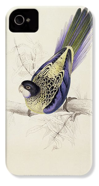 Browns Parakeet IPhone 4 / 4s Case by Edward Lear