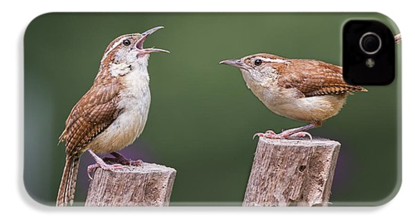 Carolina Wren Serenade IPhone 4 / 4s Case by Bonnie Barry