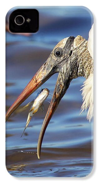Catch Of The Day IPhone 4 / 4s Case by Bruce J Robinson