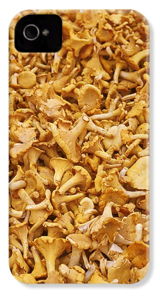 Chanterelle Mushroom IPhone 4 / 4s Case by Anonymous