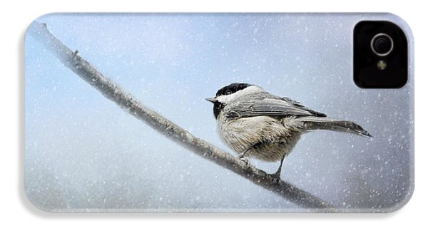 Chickadee In The Snow IPhone 4 / 4s Case by Jai Johnson