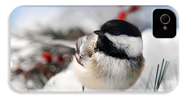 Chilly Chickadee IPhone 4 / 4s Case by Christina Rollo