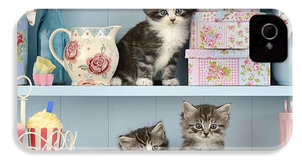 Baking Shelf Kittens IPhone 4 / 4s Case by Greg Cuddiford