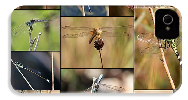 Collage Marsh Life IPhone 4 / 4s Case by Carol Groenen