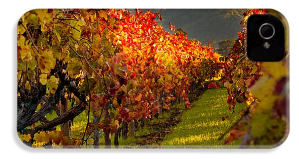 Color On The Vine IPhone 4 / 4s Case by Bill Gallagher