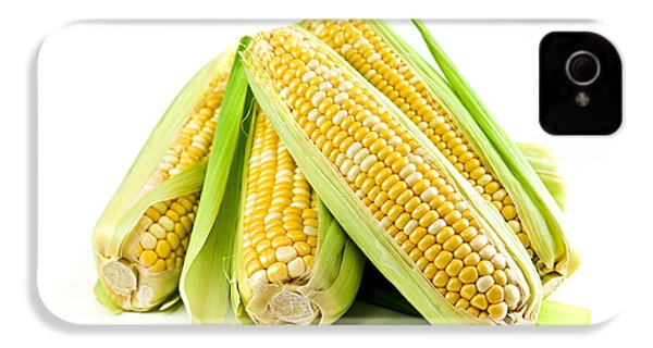 Corn Ears On White Background IPhone 4 / 4s Case by Elena Elisseeva