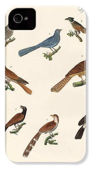 Cuckoos From Various Countries IPhone 4 / 4s Case by Splendid Art Prints
