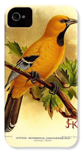 Curacao Oriole IPhone 4 / 4s Case by J G Keulemans