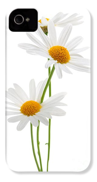 Daisies On White Background IPhone 4 / 4s Case by Elena Elisseeva