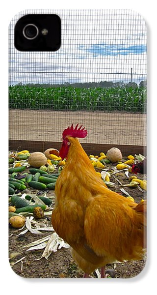 Don't Forget Your Veggies ... IPhone 4 / 4s Case by Gwyn Newcombe