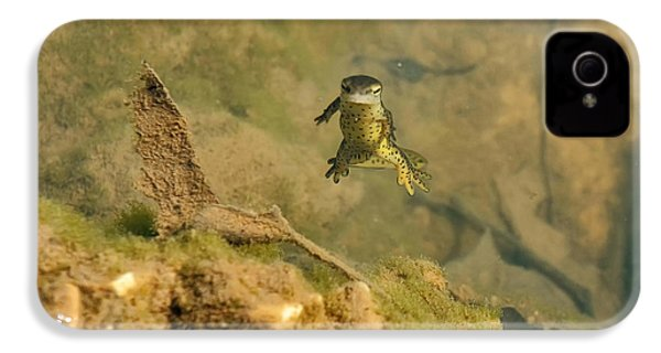 Eastern Newt In A Shallow Pool Of Water IPhone 4 / 4s Case by Chris Flees