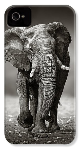Elephant Approach From The Front IPhone 4 / 4s Case by Johan Swanepoel