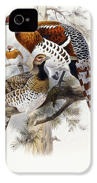 Elliot's Pheasant IPhone 4 / 4s Case by Joseph Wolf