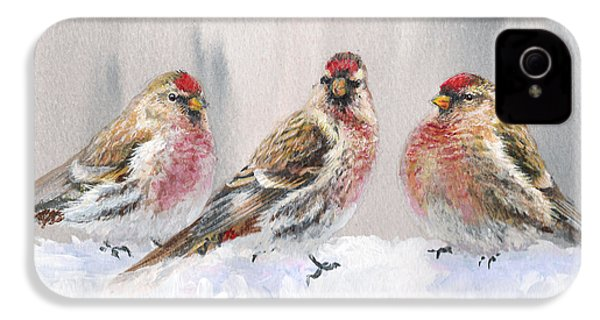 Snowy Birds - Eyeing The Feeder 2 Alaskan Redpolls In Winter Scene IPhone 4 / 4s Case by Karen Whitworth